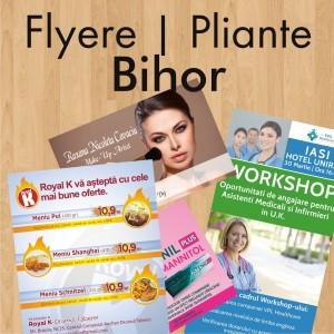 Flyere ieftine pliante Bihor