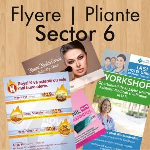Flyere ieftine pliante Sector 6