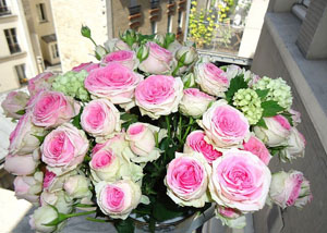 modele flyere pliante ieftine florarie, ornamente florale, florar