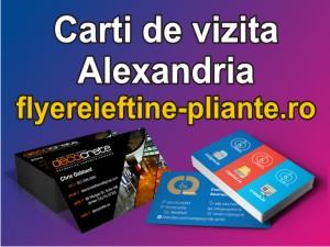 Carti de vizita Alexandria-flyereieftine-pliante.ro