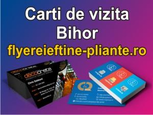 Carti de vizita Bihor-www.flyereieftine-pliante.ro