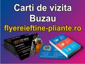 Carti de vizita Buzau-www.flyereieftine-pliante.ro