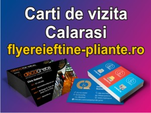 Carti de vizita Calarasi-flyereieftine-pliante.ro