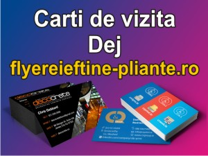 Carti de vizita Dej-flyereieftine-pliante.ro