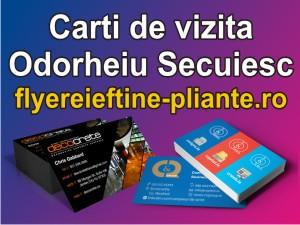Carti de vizita Odorheiu Secuiesc-flyereieftine-pliante.ro