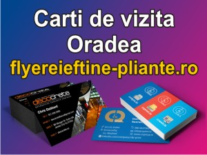 Carti de vizita Oradea-flyereieftine-pliante.ro