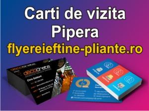 Carti de vizita Pipera-flyereieftine-pliante.ro