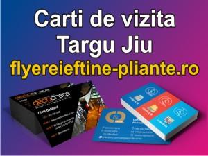Carti de vizita Targu Jiu-flyereieftine-pliante.ro