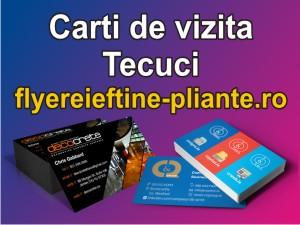 Carti de vizita Tecuci-flyereieftine-pliante.ro