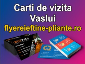 Carti de vizita Vaslui-flyereieftine-pliante.ro