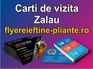 Carti de vizita Zalau-flyereieftine-pliante.ro